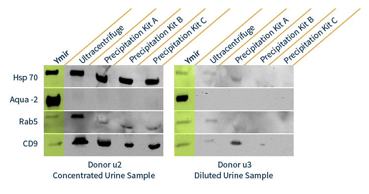 Ymir Biomarker Chart